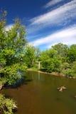 Kishwaukee River in Illinois. Beautiful blue skies on a spring day along the Kishwaukee River of Illinois Stock Photos
