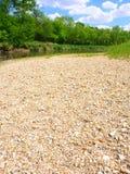 Kishwaukee River in Illinois. The Kishwaukee River winds through northern Illinois on a sunny summer day Royalty Free Stock Photo