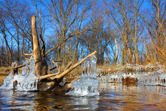 Kishwaukee River Winter Illinois. Natural ice sculptures along the Kishwaukee River in northern Illinois Royalty Free Stock Images