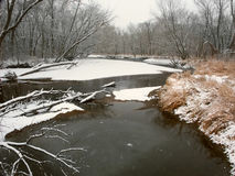 Kishwaukee zimy Rzeczny krajobraz Illinois Obrazy Royalty Free