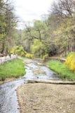 Kislovodsk 河Olhovka 库存图片