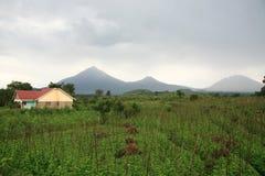 kisoro Uganda volcanoes obraz royalty free