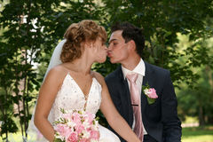 Kiss. Of the groom and the bride Royalty Free Stock Photo