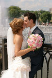 Kiss. Of the groom and the bride Royalty Free Stock Images
