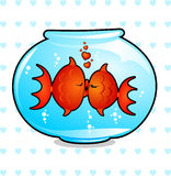 Kiss. Two fish in a bowl of water they kiss tenderly Stock Image