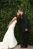 Kiss. Bride and groom kissing in front of wall of ivy Royalty Free Stock Image
