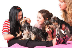 Kiss. Three young women with small dogs Royalty Free Stock Photos