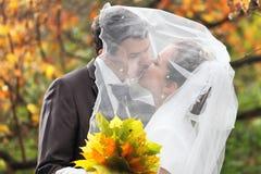 Kiss Royalty Free Stock Photo