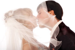 Kiss Royalty Free Stock Photography