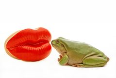 Kiss. A green frog about to kiss some red lips Royalty Free Stock Photos