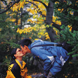 Kiss in autumn. Youth Asian couple kiss in the autumn forest Stock Photography