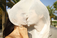 Kiss behind a veil Stock Photos