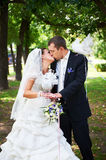 Kiss bride adn groom with white pigeons. In park stock image