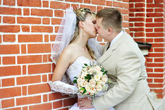 Kiss the bride and groom. About the brick wall Stock Image