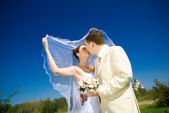 Kiss of bride and groom Stock Photos