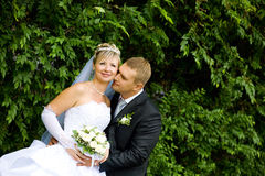 Kiss of bride and groom Royalty Free Stock Photography