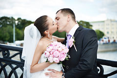 Kiss bride and groom. On bridge Royalty Free Stock Photo