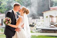 Kiss the bride and groom Stock Images