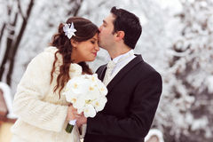 Kiss of bride and groom. In winter forest Royalty Free Stock Photos