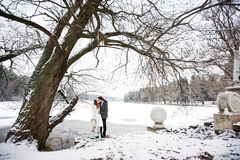 Kiss bride and groom in winter landscape. On wedding day Royalty Free Stock Image
