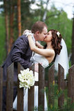 Kiss bride and groom about wooden fence Royalty Free Stock Image