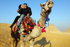Kiss in Egypt Stock Images