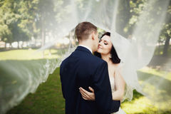 Kiss of elegant bride and groom under transparent veil Royalty Free Stock Photo
