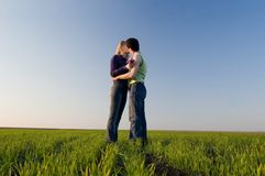 Kiss in the field. The guy and the girl kiss in a spring field Royalty Free Stock Photo