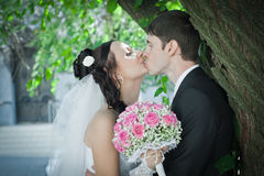 Kiss of the groom and bride Royalty Free Stock Images