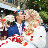 Kiss happy newlyweds Stock Images