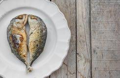 Kiss mackerels Royalty Free Stock Photography