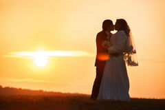 A kiss of newlyweds enlightened by the rays of sunset Royalty Free Stock Photos