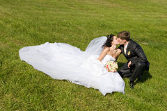 Kiss On The Grass Stock Images