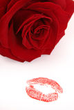 Kiss and rose Royalty Free Stock Images