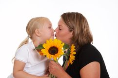 Kiss and sunflowers Stock Images