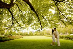 Kiss Under The Tree. Couple kissing under the tree