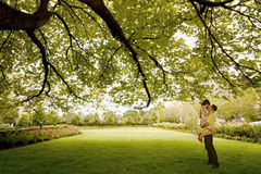 Kiss under the tree Stock Photos