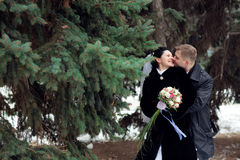 Kiss in winter royalty free stock photography
