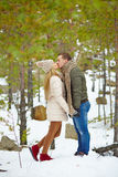 Kiss in winter forest Stock Photos