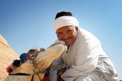 Kissed by a camel. At the Great Pyramids of Giza in Cairo Egypt Stock Photos