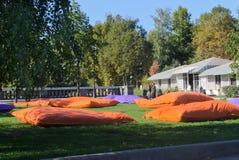 Kissen, Gorky-Park Stockbild