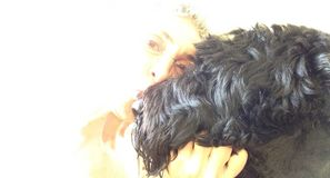 Woman Kissing a Black Russian Terrier Dog Stock Photo