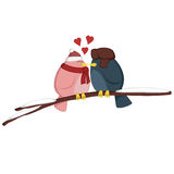 Kissing birdies on a branch Stock Photo
