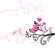 Kissing birds Royalty Free Stock Images