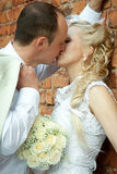 Kissing bride and groom Stock Images