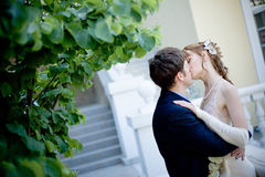 Kissing bride and groom Stock Image
