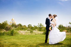 Kissing the bride in the park Stock Photography