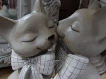 Kissing cats Royalty Free Stock Photo