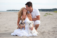Kissing couple on beach. A kissing couple with their pet dogs on the beach Stock Images