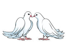 Kissing couple of doves. Dove couple, love dove bird, kiss pigeon, valentine dove wedding, vector illustration Stock Image